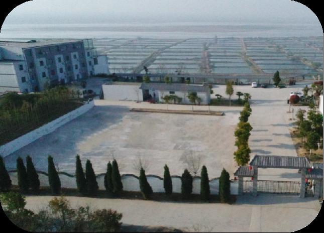 荥阳聚荣生态园拓展训练基地